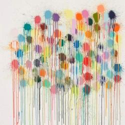 Colour Splat Wallop