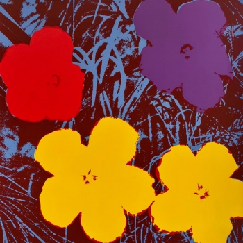 Flowers, 11.71 (Published by Sunday B Morning - After Warhol)
